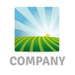 Country Morning Sunrise Company Logo