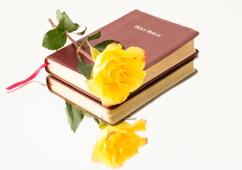 Yellow Rose over a Bible