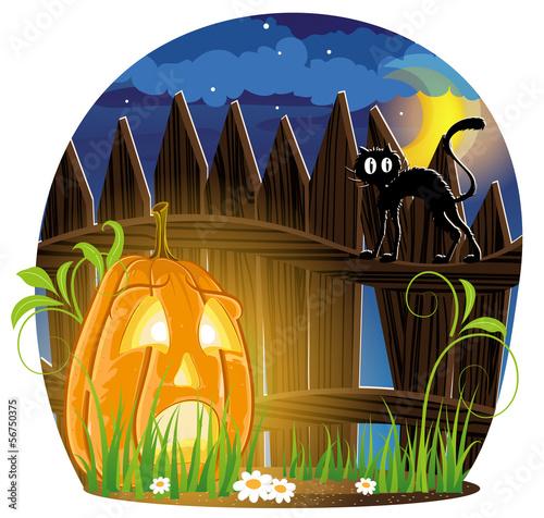 Jack o Lantern and black cat