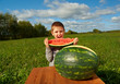 Smiling little boy eating watermelon