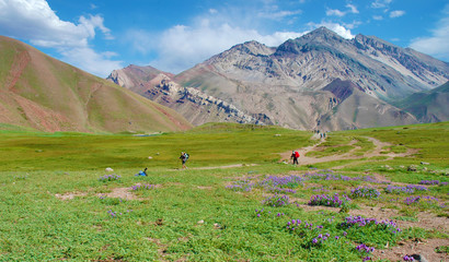 Horcones Valley, Aconcagua National Park