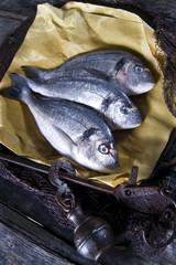 Above Sea Bream Fish Scales