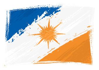 Grunge Tocantins flag