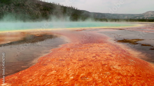 Colorful bacteria mat surrounding Grand Prismatic Spring