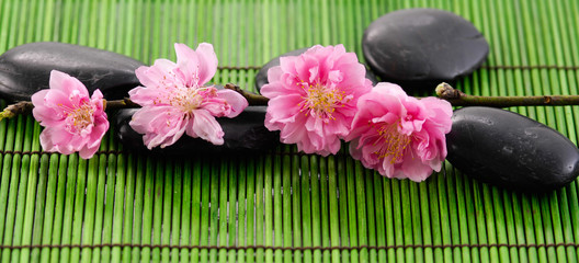 Pink camellia with Stones on stick straw green mat