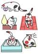 猫、いろいろ行動