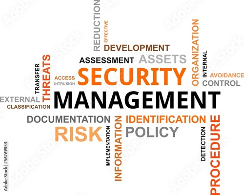 word cloud - security management