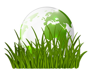 Earth globe on green grass