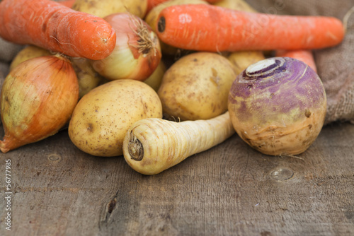 Winter seasonal vegetables collection including potatoes, parsni