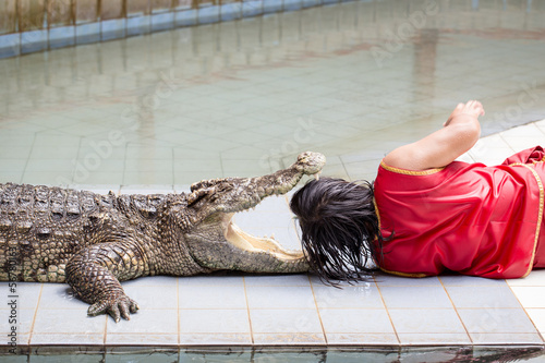 THAILAND, Kanjanaburi - SEPTEMBER 29: An unidentified zoo keeper