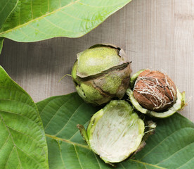 Ripe walnuts with leaves on a background of wood