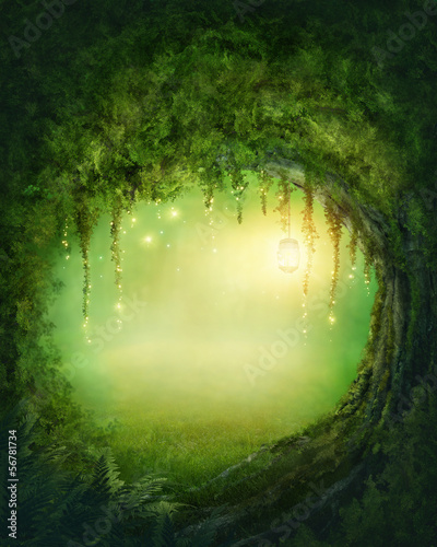Poster Bossen Enchanted forest