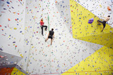 People involved in climbing in a climbing gym