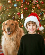 Little Boy and Dog at Christmas