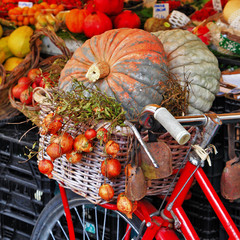 still life with pumpkins on roman market
