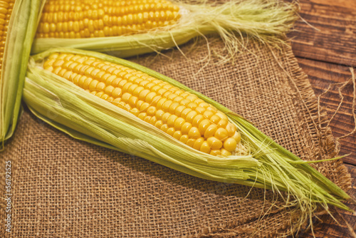Ear of corn on wooden background