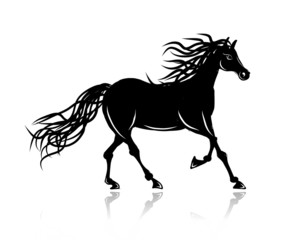 Horse silhouette for your design