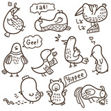 Vector set of doodle birds with some their habits