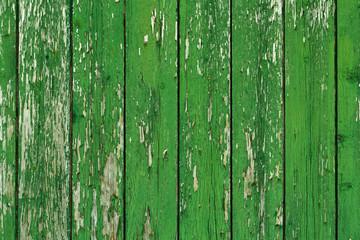 grüne Holzwand, Hintergrund