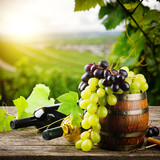 Bottles of red and white wine with fresh grape - 56795707
