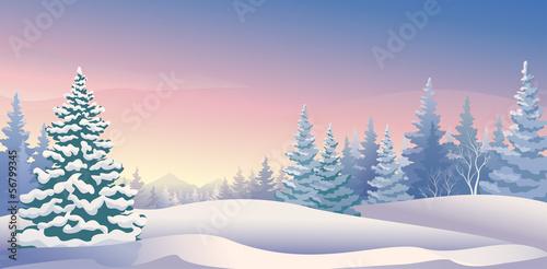 Winter sunrise panoramic - 56799345