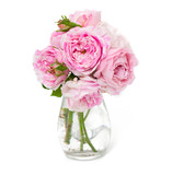 bunch of pink striped roses isolated on white