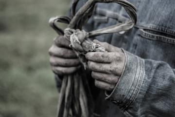 the hands of the shepherd
