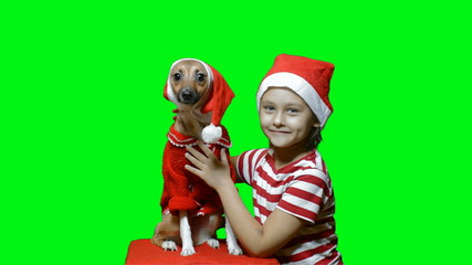 little girl and dog in santa claus hats
