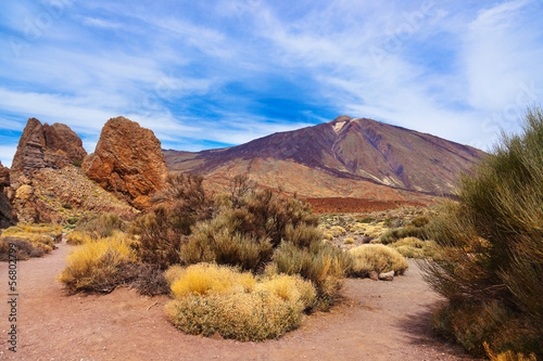 Finger Of God rock at volcano Teide in Tenerife island - Canary - 56802799