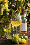 Weinglas und Weinflasche im Herbst