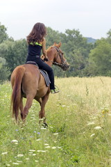 Woman on brown horse