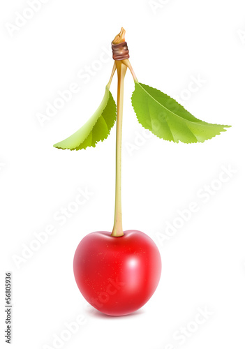 Ripe red cherry with leaves