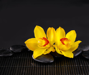Yellow orchid with black stones on mat