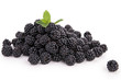 isolated blackberries