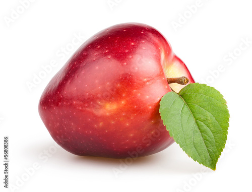 apple red one leaf