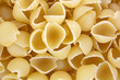 A close view of small uncooked pasta shells