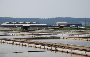 Salt Flats at Seca