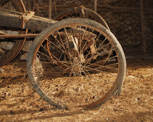Wheel on Old Wooden Cart