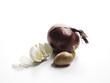 Zwiebel, Schalotte und Knoblauchzehen