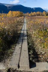 Hiking Plank on the Kungsleden