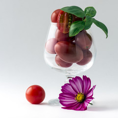 tomates apéritives