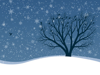 Winter card of snowfall with trees.