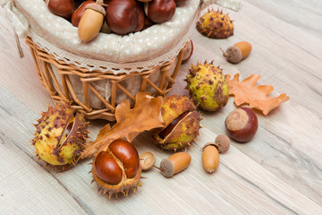 chestnuts and acorns in a wicker basket. horizontal photo