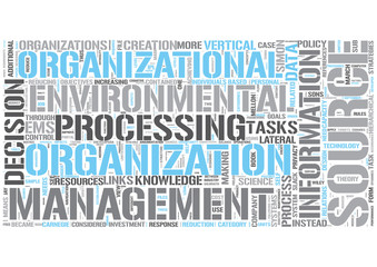 Information management Word Cloud Concept