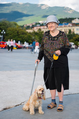Old woman and american spaniel