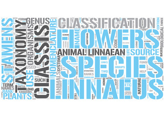 Linnaean taxonomy Word Cloud Concept
