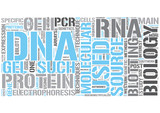 Molecular biology Word Cloud Concept