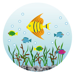 underwater background with fishes and algae