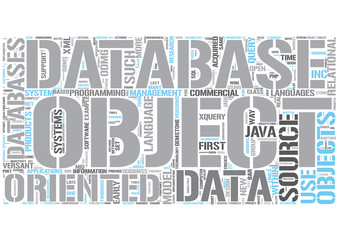 Object database Word Cloud Concept