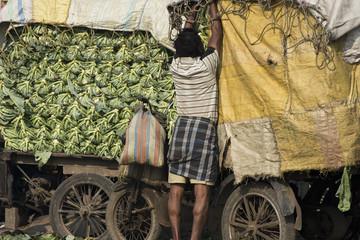 Calcutta -  Sanderbans - Ghatakpur Cualiflower market